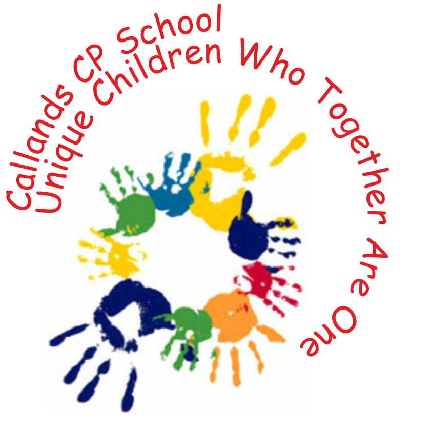 12-1020callandscountyprimaryschool-logo(jpeg)(3)